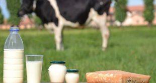 Lý do gây dị ứng đạm sữa bò ở bé là gì?